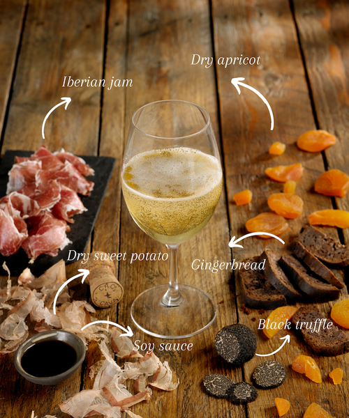 Cava – the search for the perfect pairing