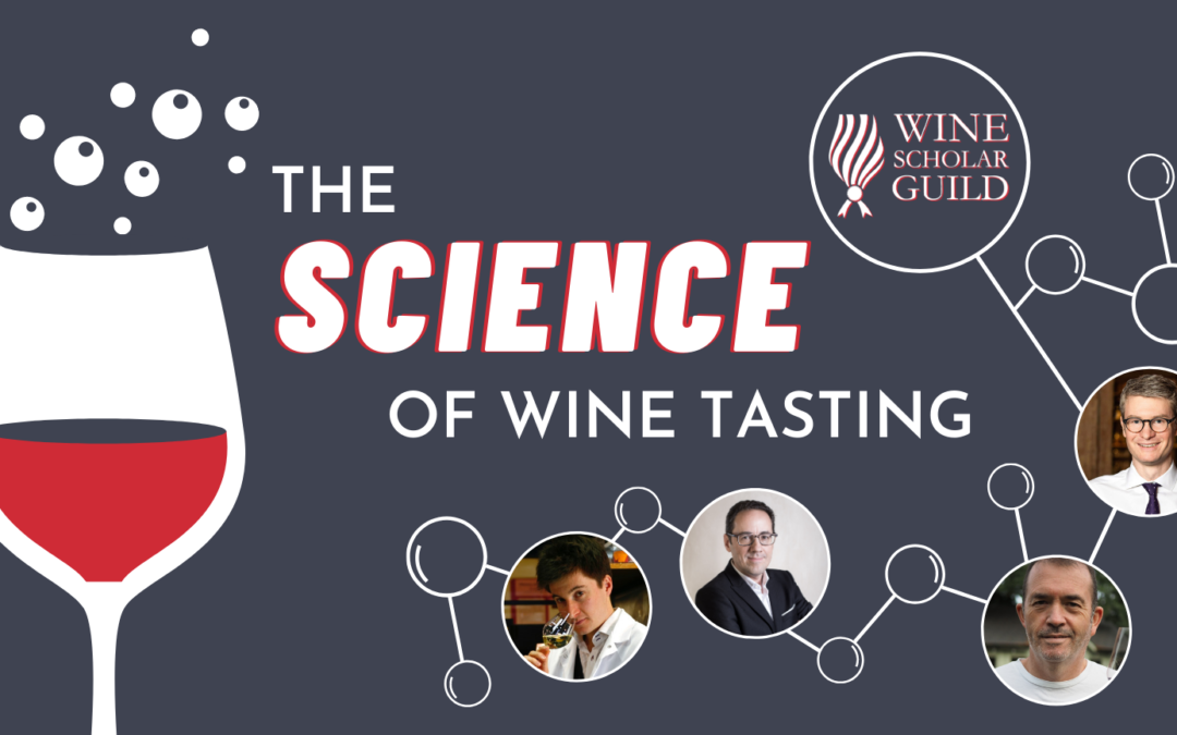 3 Chartier webinars in the Science of Wine Tasting Series of the Wine Scholar Guild